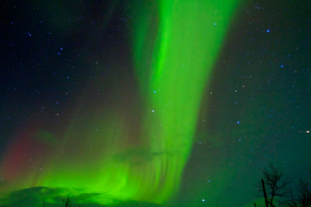Pilar_aurora13.jpg