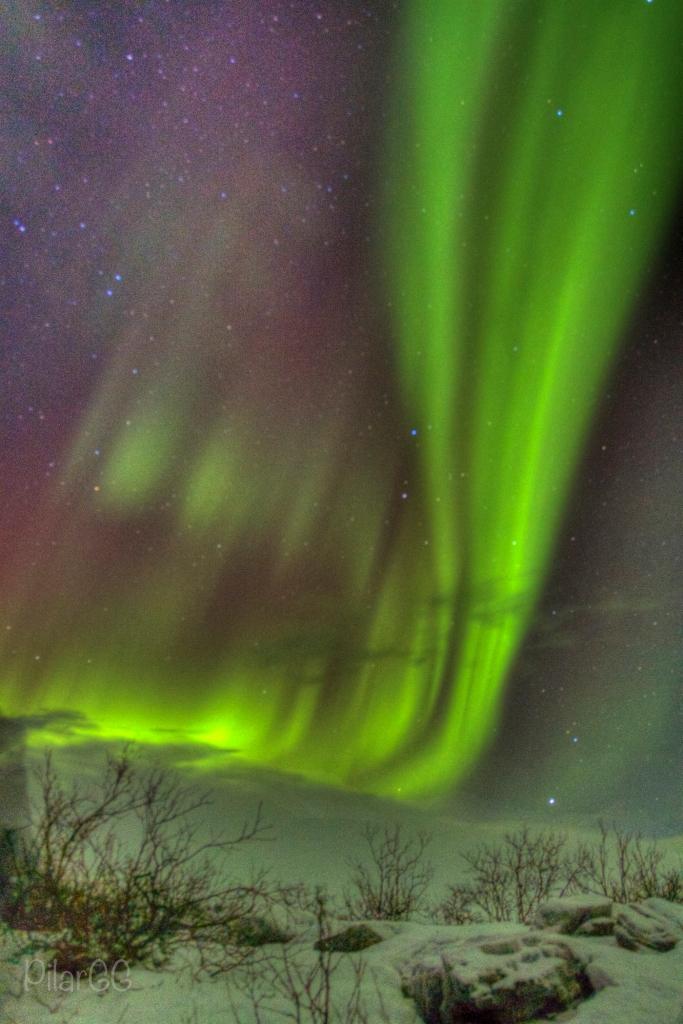 Pilar_aurora14_bis
