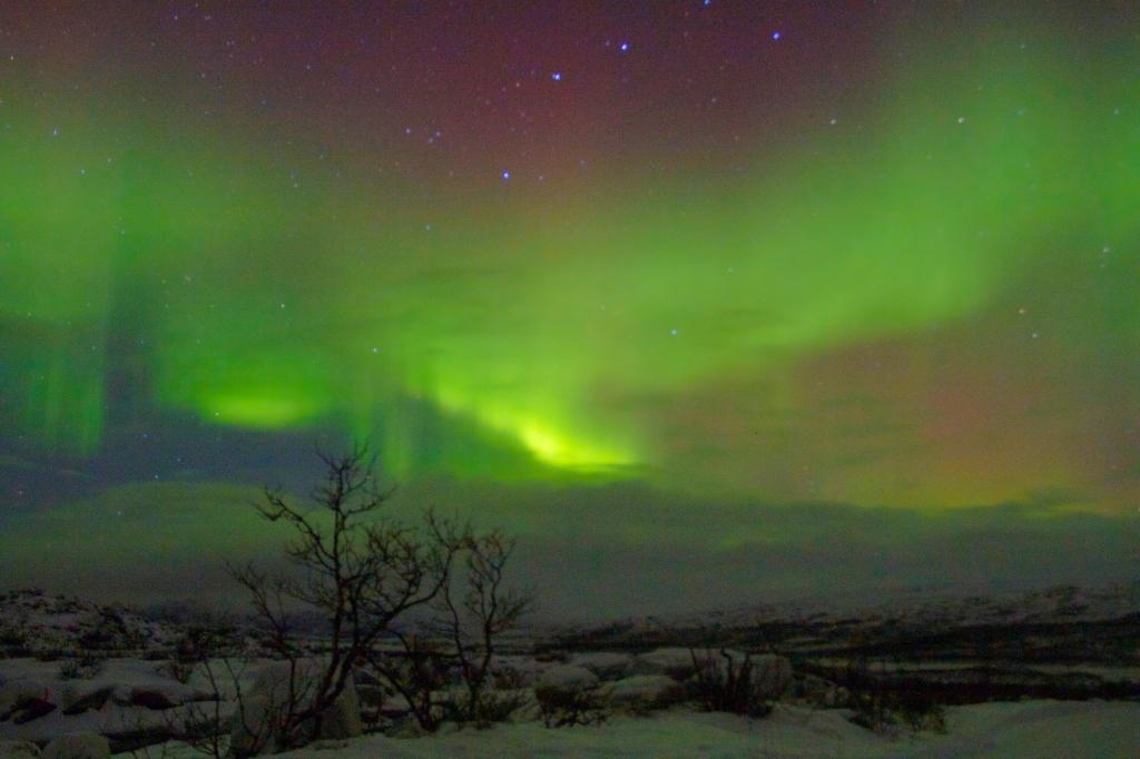 Pilar_aurora20_bis